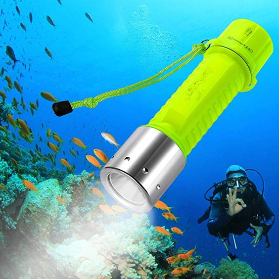 Best Underwater Equipment for Scuba Diving for Beginners